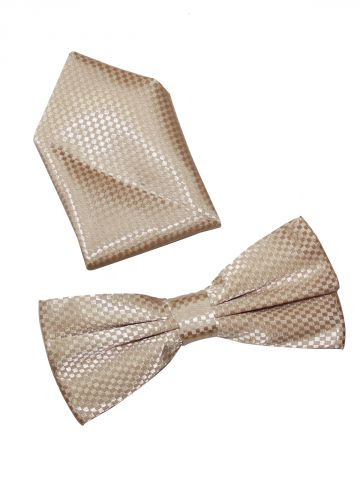 https://static4.cilory.com/109373-thickbox_default/light-brown-bow-with-pocket-square.jpg