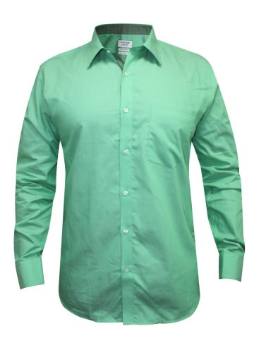 https://static7.cilory.com/150241-thickbox_default/turtle-green-casual-shirt.jpg