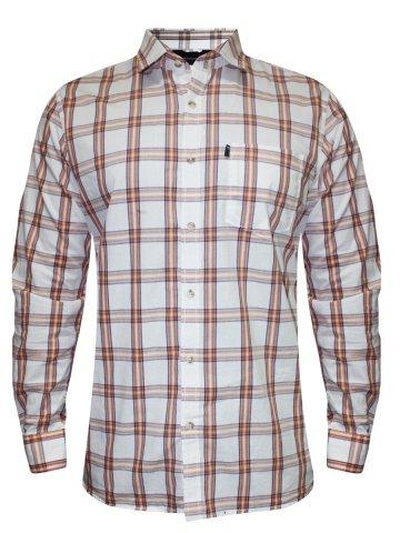https://static7.cilory.com/184514-thickbox_default/peter-england-off-white-casual-checks-shirt.jpg