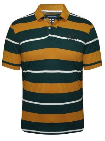 https://static.cilory.com/207345-thickbox_default/peter-england-mustard-green-polo-t-shirt.jpg