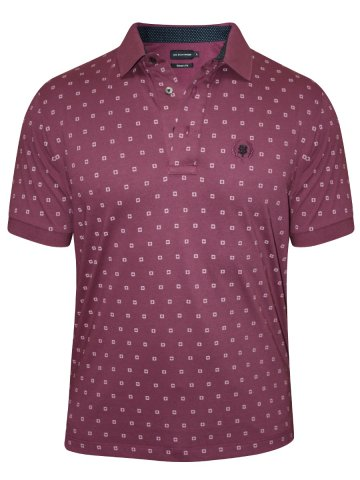 https://static6.cilory.com/209807-thickbox_default/uni-style-images-plum-printed-polo-t-shirt.jpg
