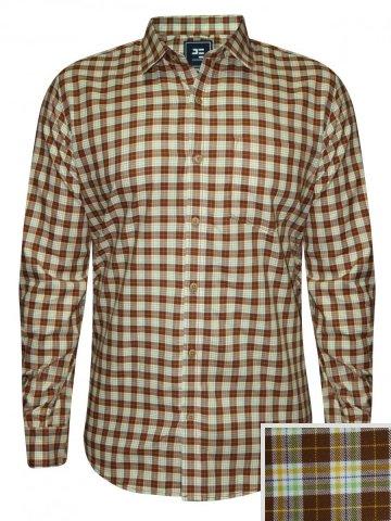 https://static9.cilory.com/211371-thickbox_default/peter-england-brown-casual-checks-shirt.jpg