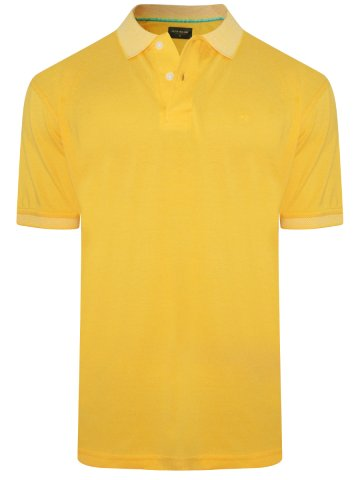 https://static9.cilory.com/314983-thickbox_default/peter-england-sunshine-yellow-polo-t-shirt.jpg