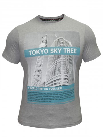 https://static8.cilory.com/57527-thickbox_default/cs-round-neck-grey-t-shirt.jpg
